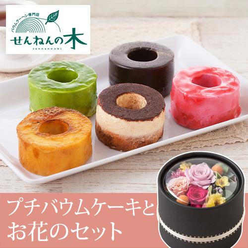 せんねんの木・プチバウムケーキ
